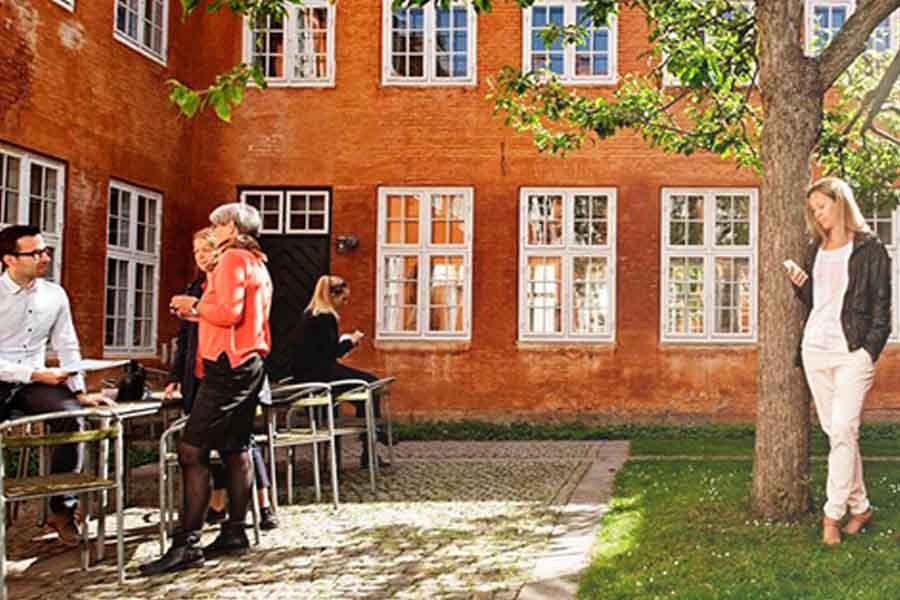 Socialt samvær i den danske sommer