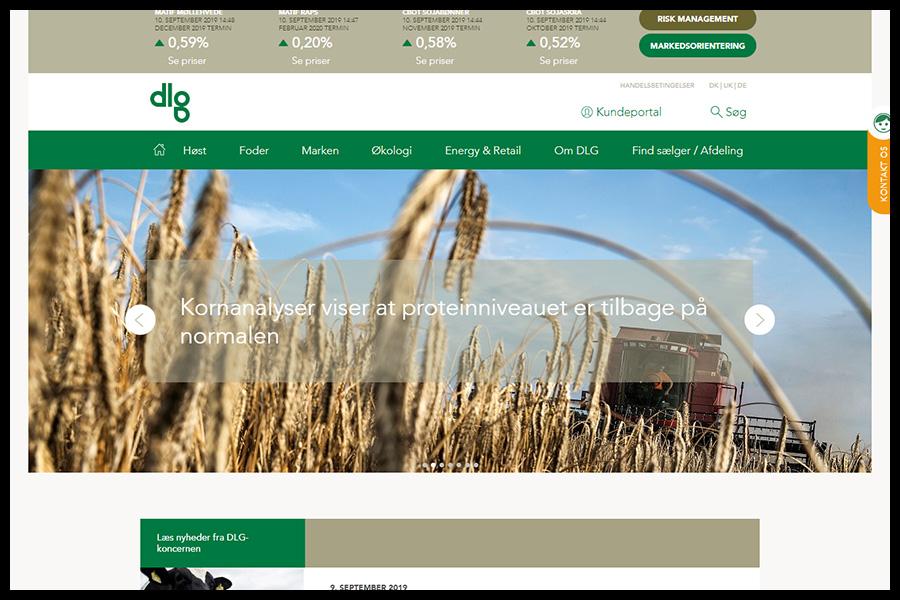 DLG Website Screenshot