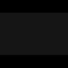 Skin & Goods - Logo